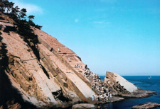 Climbing the big rock of Tomogashima Island