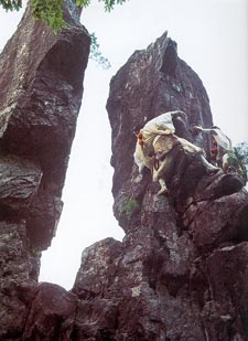 To turn around the Rock of Equality : Test of free-climbing during the Omine pilgrimage